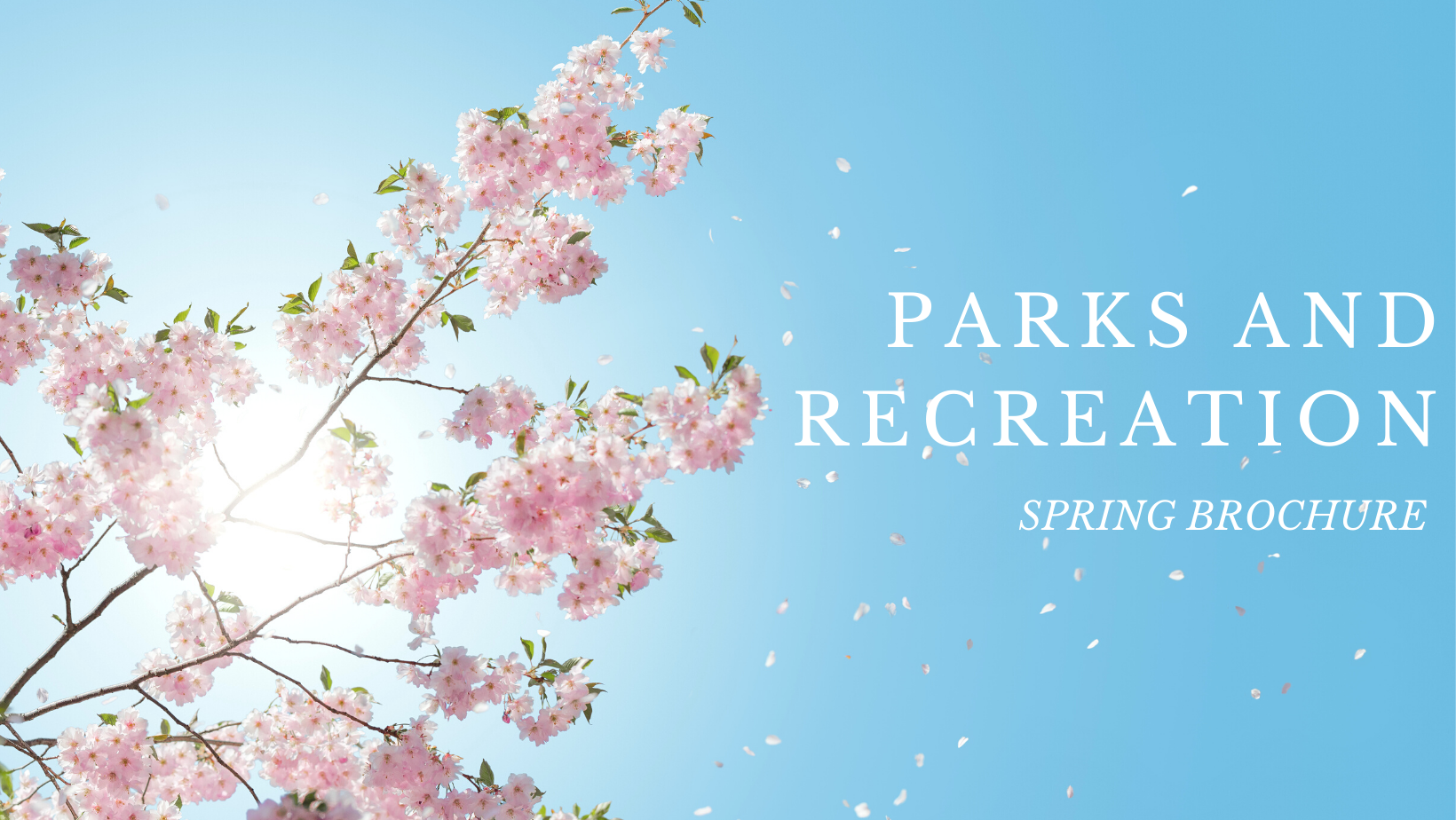 parks and recreation spring brochure